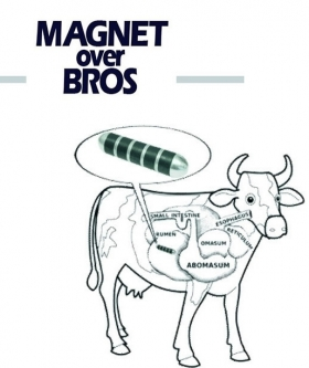 Mu Magnets - Magnet Over Bros
